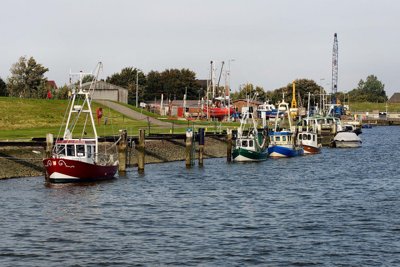 Hafen Friedrichskoog